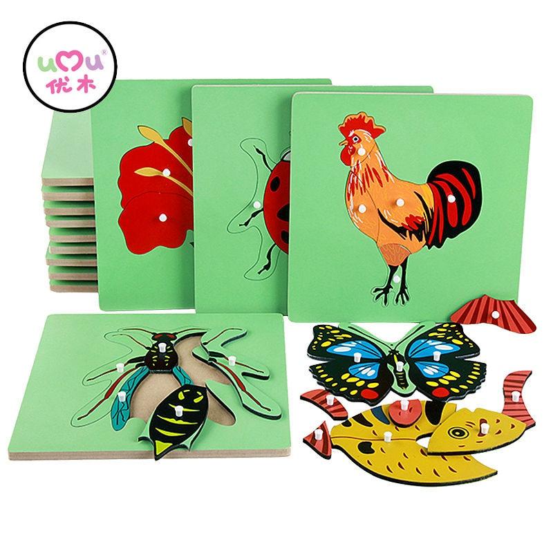 Montessori Educational Wooden Toys Animal Puzzle Bird Fish Turtle Montessori Sensorial Board Early Montessori Materials UC0564H
