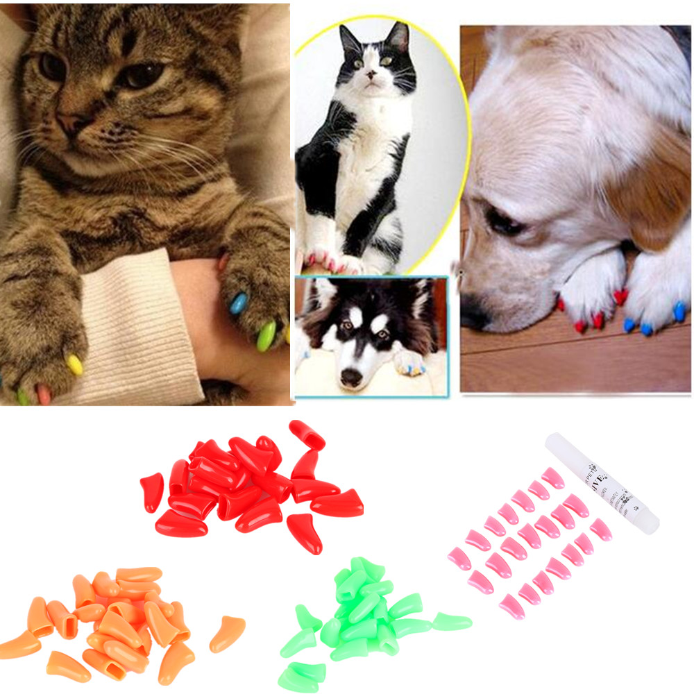 20pcs Colorful Cats Dogs Kitten Paws Grooming Nail Claw Cap Soft Rubber Pet Nail Cover Paws Caps Pet Supplies