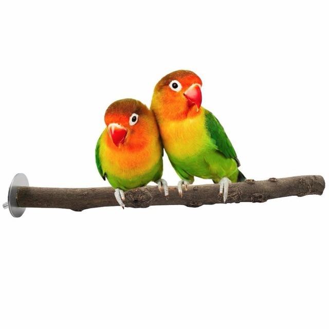 Natürliche hölzernen zweig papagei vogel kauen spielzeug