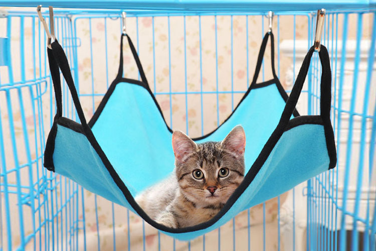 Cat Hammock Beds Soft Fleece Cat Hammock Beds Soft Fleece 4 Colors Hanging-Free Shipping Cat Hammock Beds Soft Fleece 4 Colors Hanging-Free Shipping HTB1ExsaQFXXXXbyXFXXq6xXFXXXg