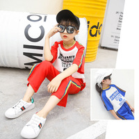 Summer New Product Girl Child Bottom Trouser Leg Vent Short Sleeve Chiffon Motion Suit 2 Pieces