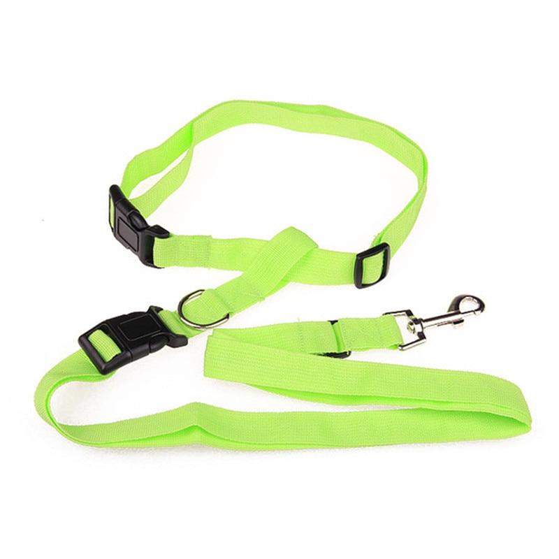 New-Adjustable-nylon-pet-led-dog-collar-harness-for-small-dogs-Running-Jogging-Sport-Walking-leash.jpg_640x640 (4)