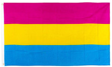 johnin hanging 90*150cm Omnisexual LGBT pride pansexual Flag For Decoration(China)