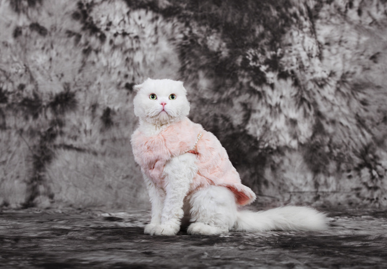 Dogs cats luxury pearl hoodies doggy lovely pink princess sweaters costume puppy overcoat pet dog cat jackets clothing 1pcs