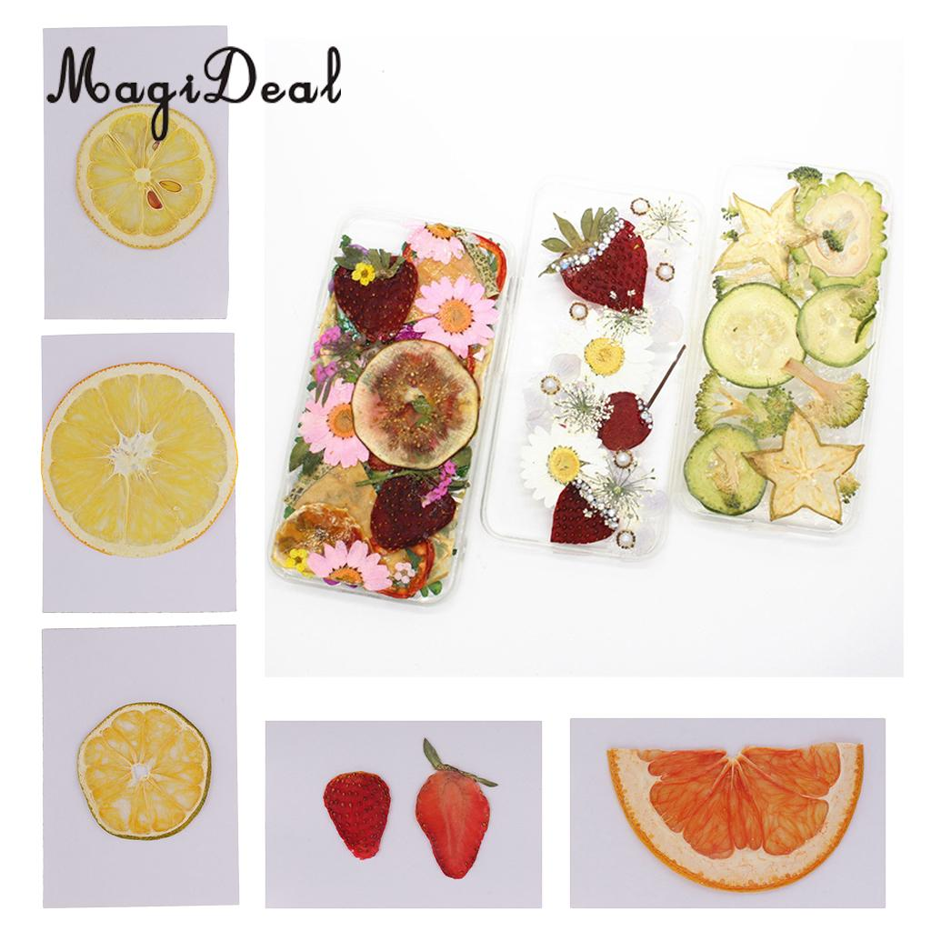 MagiDeal Natural Real Dried Fruit Slice Specimen for Christmas Home Garden Ornament Art Craft Wreath Florist Decoration