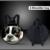 Forudesigns vaqueros calientes mochilas de diseño para los bebés varones denim lindo animal cat perro patrón niños mochilas niños Mochila