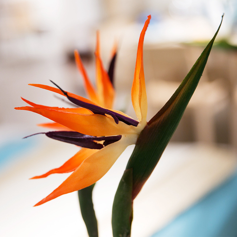 Simulation Artificial Flower Fake Strelitzia Vivid Home Wedding Party Decoration Drop Shipping