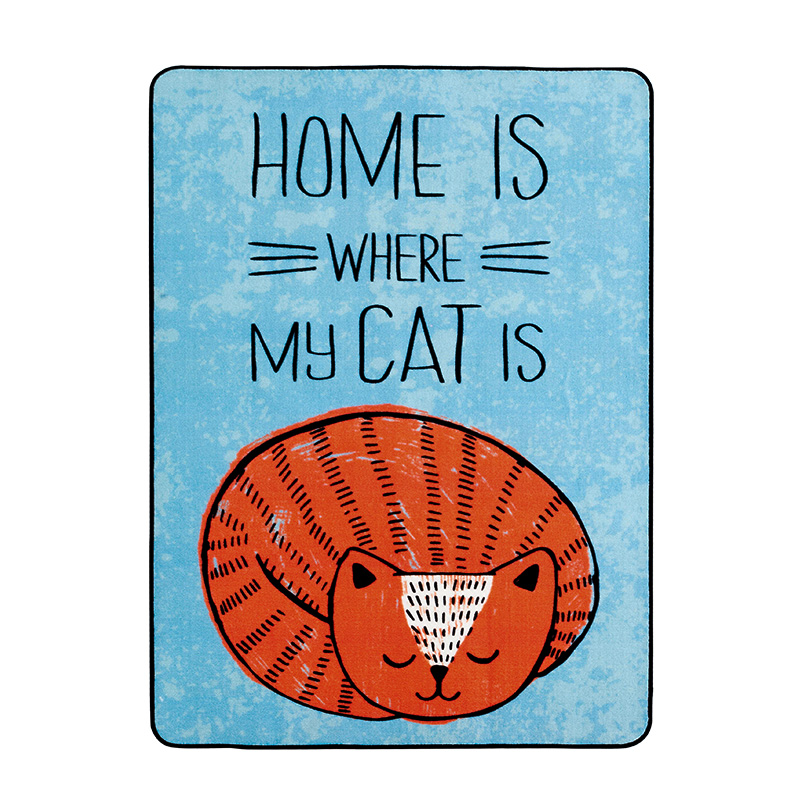 WINLIFE Cartoon Lovely Sleeping Cat Carpets Area Rugs For