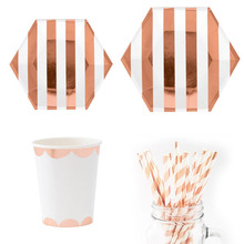 Rose Gold Striped Party Disposable Paper Plate Cups Straws Napkins Snack Gift Bags Wedding Bride Shower Anniversary Party