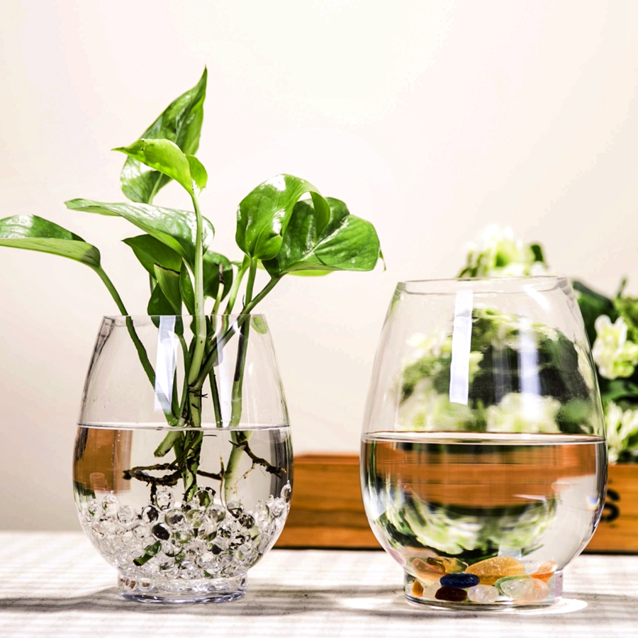 Dinosaur egg simple transparent vase hydroponic lucky bamboo green dinosaur egg simple transparent vase hydroponic lucky bamboo green dill water for glass plant pots in vases from home garden on aliexpress alibaba reviewsmspy