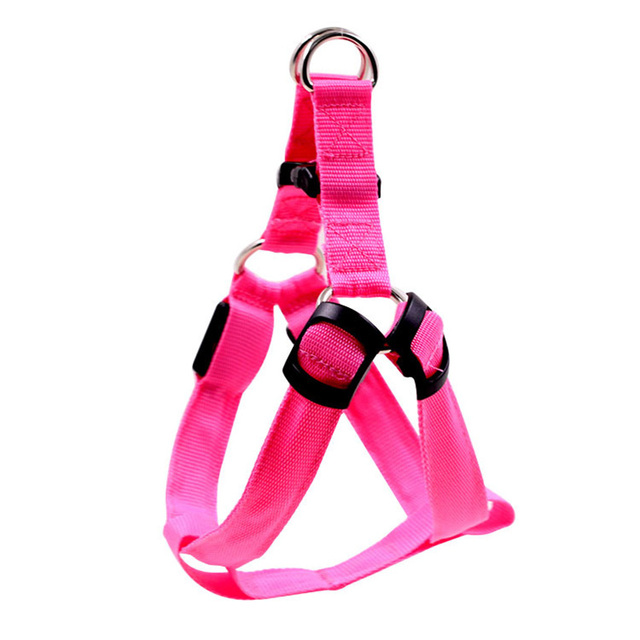 PET Nylon LED Dog Harness