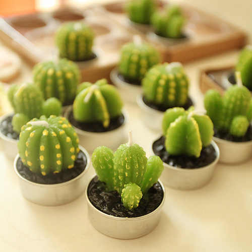 2 pcs/lot.Cute Kid's Birthday Mini Cactus Plant Party Candle.Creative Potted Birthday Cake Candles.Party Supplies.Home Decorate