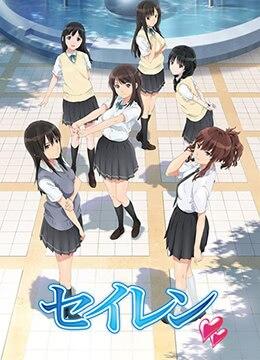 《清恋》2017年日本动画动漫在线观看