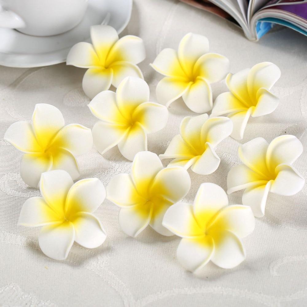 Hawaiian Flower Plumeria Ide Dimage De Fleur