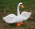 Simulation 1pc 28cm lovely white swan plush toy doll performing props gifts