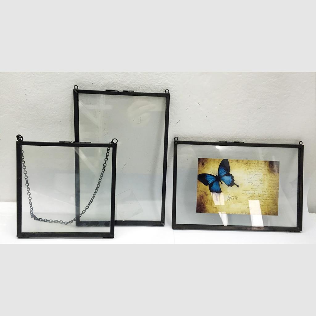 Photo-Frame Display Specimen Flower-Leaf Wall-Hanging Dried-Plant Portrait Vintage Double-Sided