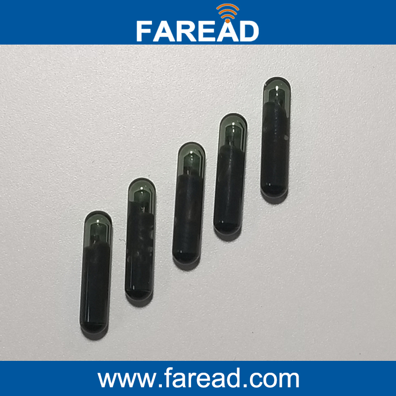 X60pcs Bioglass 3*13mm 125KHZ RFID Microchip Glass Capsule For Identification