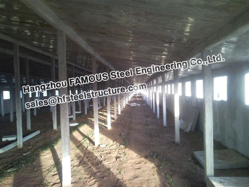 Steel Structural Cow Shed