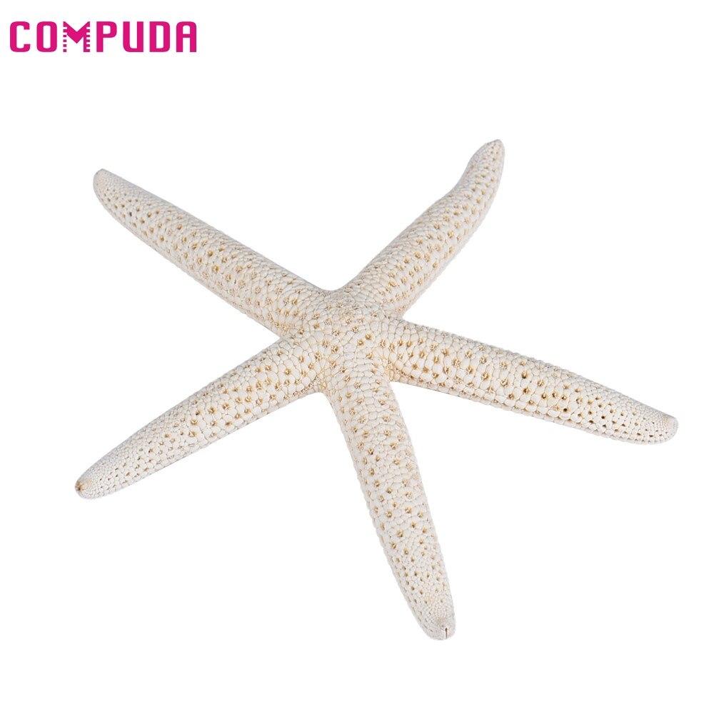 5 Piece 10-12cm White Natural Finger Starfish Craft Decoration Natural Sea Star DIY Beach Cottage Wedding Decor