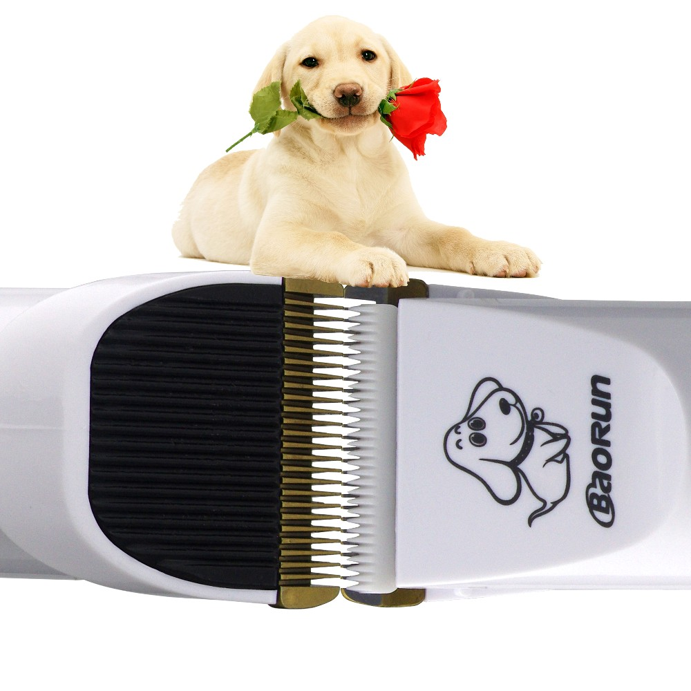 Rechargeable Low-noise Cat Dog Hair Trimmer Electrical Pet Hair Clipper Remover Cutter Grooming Pets Accessories Haircut 10