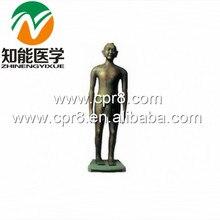 BIX-Y1001 Archaize Acupuncture Copper Manikin(Antique Bronze) WBW328