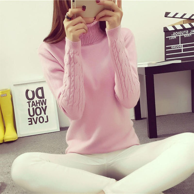2016-Women-Sweaters-And-Pullovers-Hot-Sweater-Women-Winter-turtleneck-sweater-twisted-thickening-slim-pullover-sweater (2)