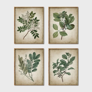 Green Plant Wall Art Prints Retro Poster , Vintage Leaves Canvas Painting Print Botanical Art Decor Wall Picture Home Decoration(China)