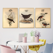 New Chinese Bird Animal Decoration Canvas Painting Background Wall Printing Posters for Living Room  Decor DJ239