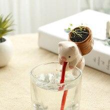 DIY mini animal Desktop aerobic planting miniature pot small Japanese zakka thirsty thirsty plants suck in