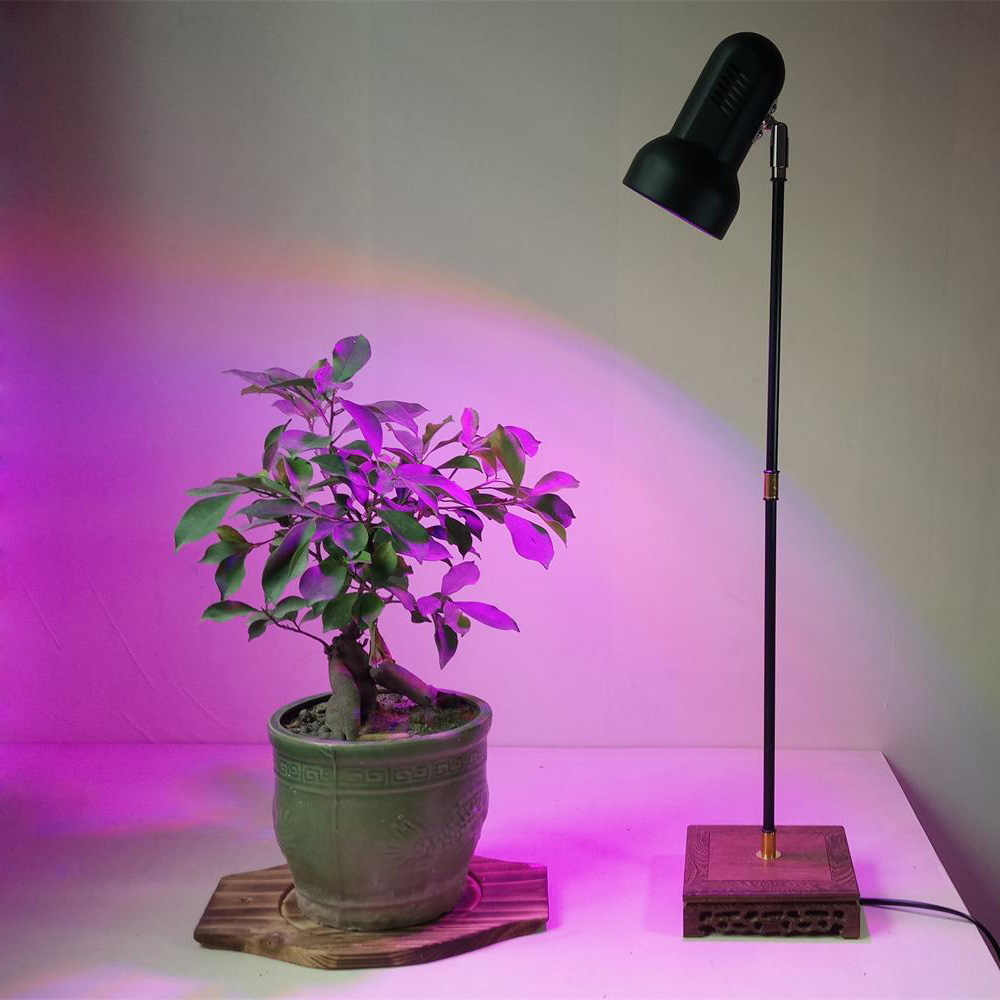 28W Indoor LED Plant Grow Light Stand Desk lamp for Home