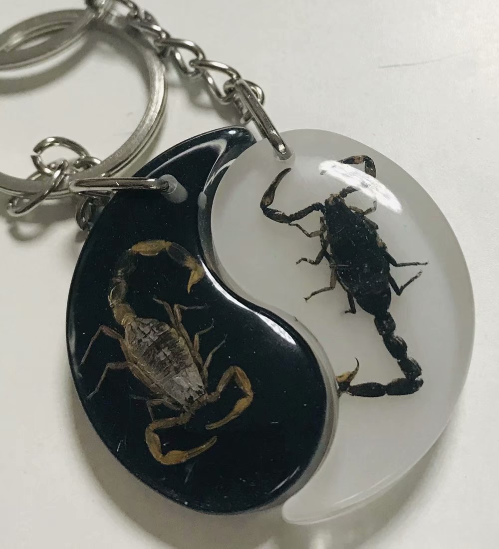 Free Shipping Yqtdmy Magic Insect Keychain Gold Black Scorpion Specimens Collecting JEWELRY TAXIDERMY