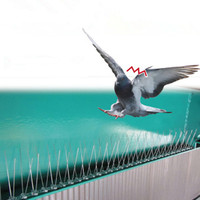 2.5 m pássaro de plástico e pigeon spikes anti pássaro pigeon spike para se livrar de pombos e assustar aves controle de pragas