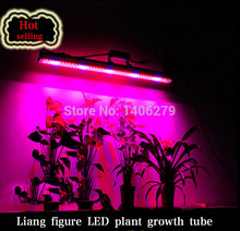 Wholesale T8 LED plant grow Tube 60cm SMD 3528 led Plant Grow Light lamp full spectrum for indoor vegetable