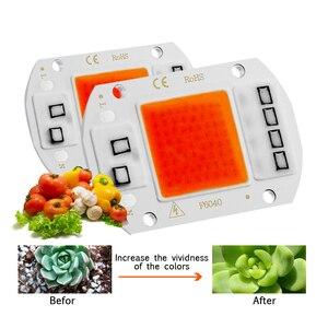 Image 3 - COB שבב LED לגדול אור פיטו מנורת AC 220V 20W 30W 50W ספקטרום מלא לא צריך נהג לצמיחה פרח שתיל לגדול צמח