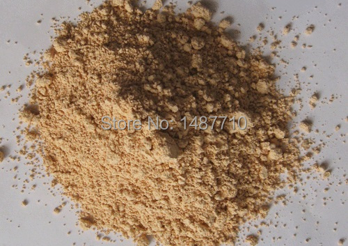 GMP Factory supply Angelica sinensis extract/ Angelica extract powder 10:1