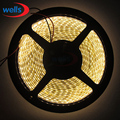 Hi-Q 3528 SMD 5M 120 LEDs/M Warm White Yellowish DC24V LED Strip Flexible Light waterproof