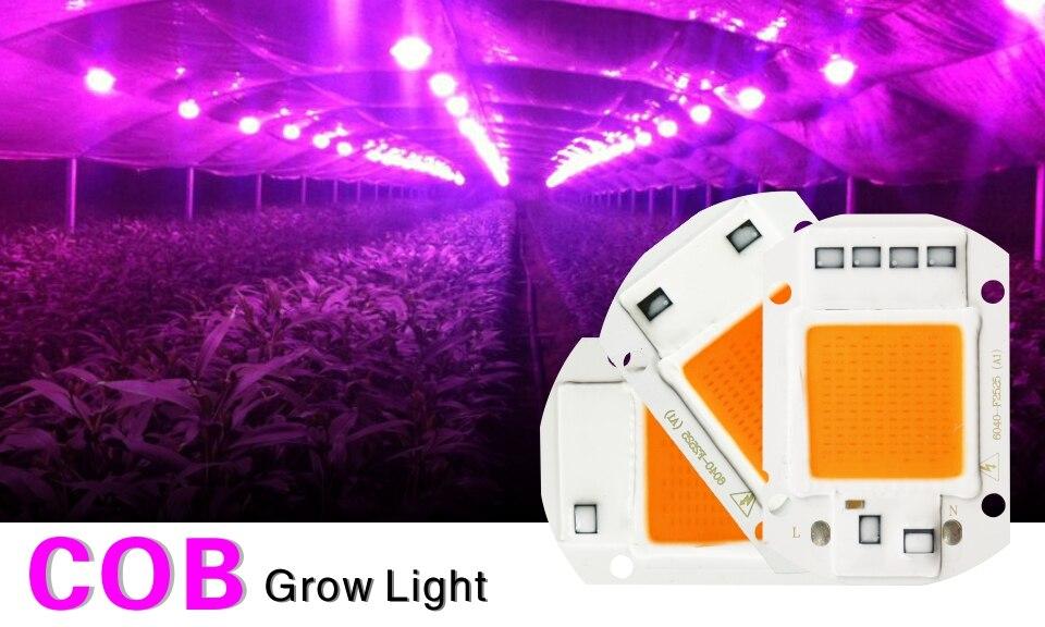 Светодиодный чип для выращивания 10 Вт 20 Вт 30 Вт 50 Вт 220 В-240 В cob Чип для выращивания света полный спектр 380nm-840nm для выращивания растений в помещении и выращивания цветов
