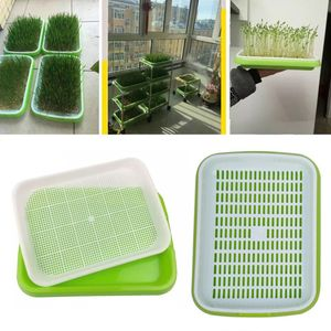 Seed Sprouter Tray Double-laye