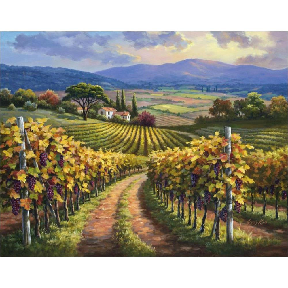 Colorful Oil Paintings Italian Village Sung Kim Vineyard Hill