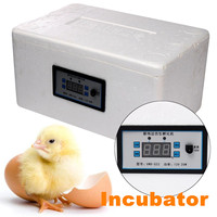 Automatic Family 32 Eggs Incubator 12V 20W Digital Chicken Duck Poultry Hatcher Tray Brooder Home Small Foam Incubation Tools