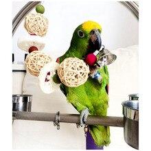 Дюфа колокольчиком conure какаду птиц клетки клетка попугай губка ручной игрушки