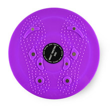 Massage and Waist Twisting Disc