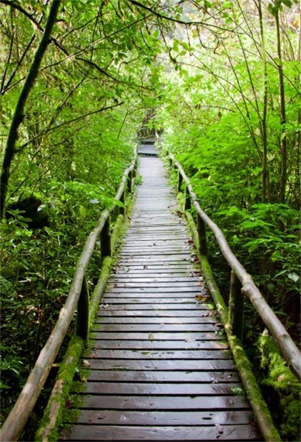 Laeacco Green Forest Wooden Bridge Pathway Scenic