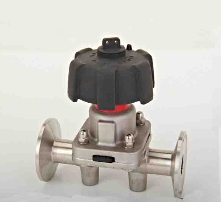 SS316L stainless steel sanitary pneumatic manual diaphragm valve with EPDM seal SDGMF-25E 3 1 2 ss 304 butterfly valve manual stainless steel butterfly valve sanitary butterfly valve welding butterfly