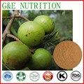 500g GMP Fornecedor Phyllanthus emblica/baga Amla Extrato com frete grátis