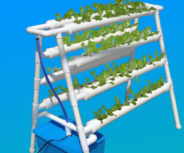 aliexpresscom buy diy hydroponics system nft with 72pcs of net cup nutrient film technique nft from reliable hydroponic tent suppliers on horticulture