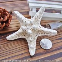 10 шт./партия коралловый Средний манду 4-7 см yangtz украшение натуральная морская звезда бежевая белая Морская звезда Свадебная вечеринка