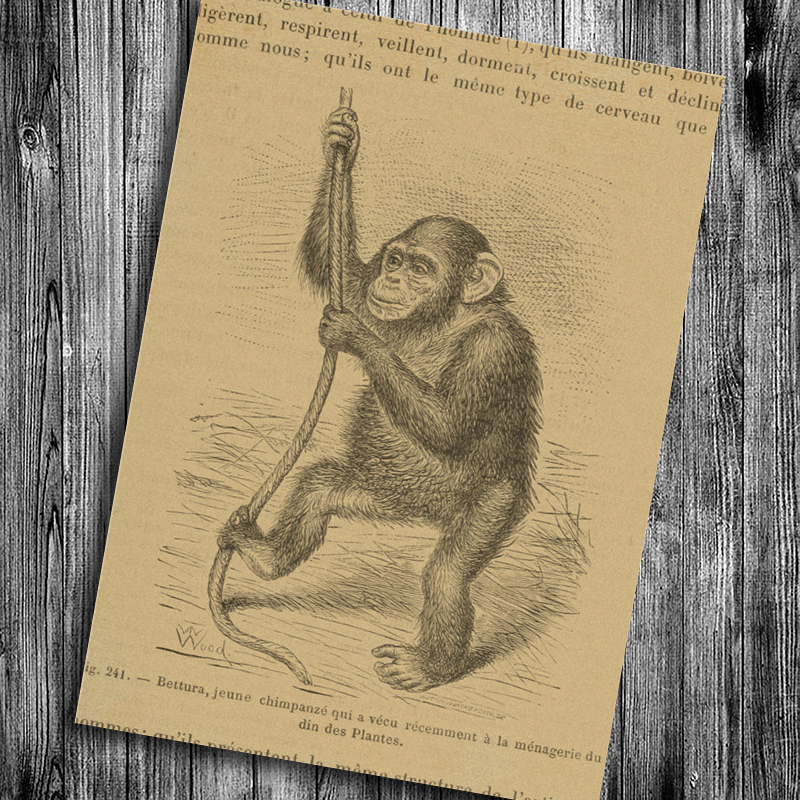 Vintage Poster about Savage Hunting Retro Wall Sticker Krafts Paper ...