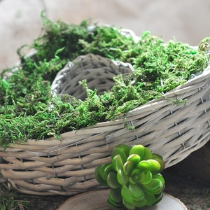 Image 5 - ナチュラル50グラム袋ドライリアルグリーンモス装飾植物花瓶人工モス芝シルクの花のアクセサリー植木鉢装飾