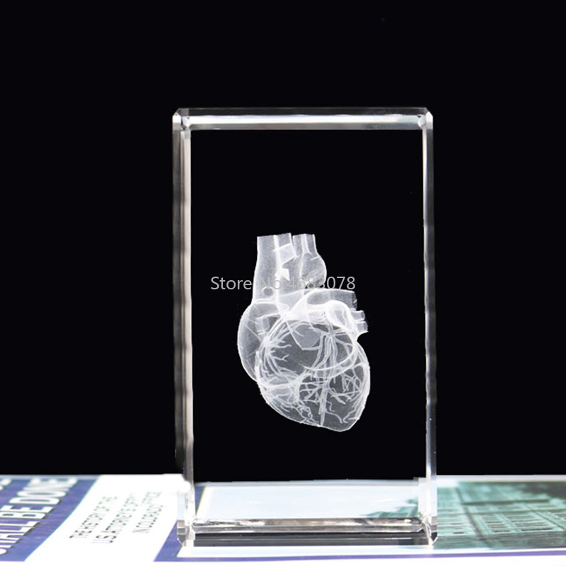 3D Stereoscopic Crystal Inner Carving Human Heart Anatomy Model For Medical Teaching Supplies Or Ideal Gift 50*50*80mm